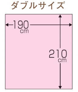 DLサイズ